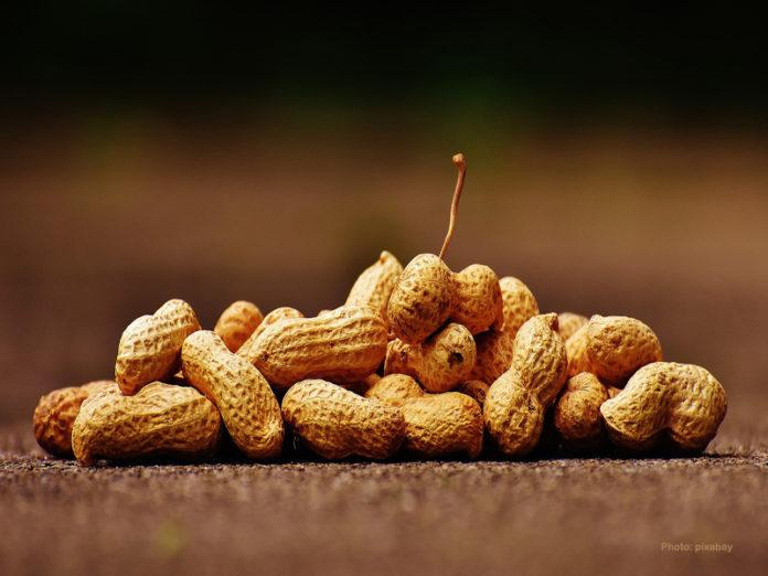 peanut-peanut-allergy-696x522